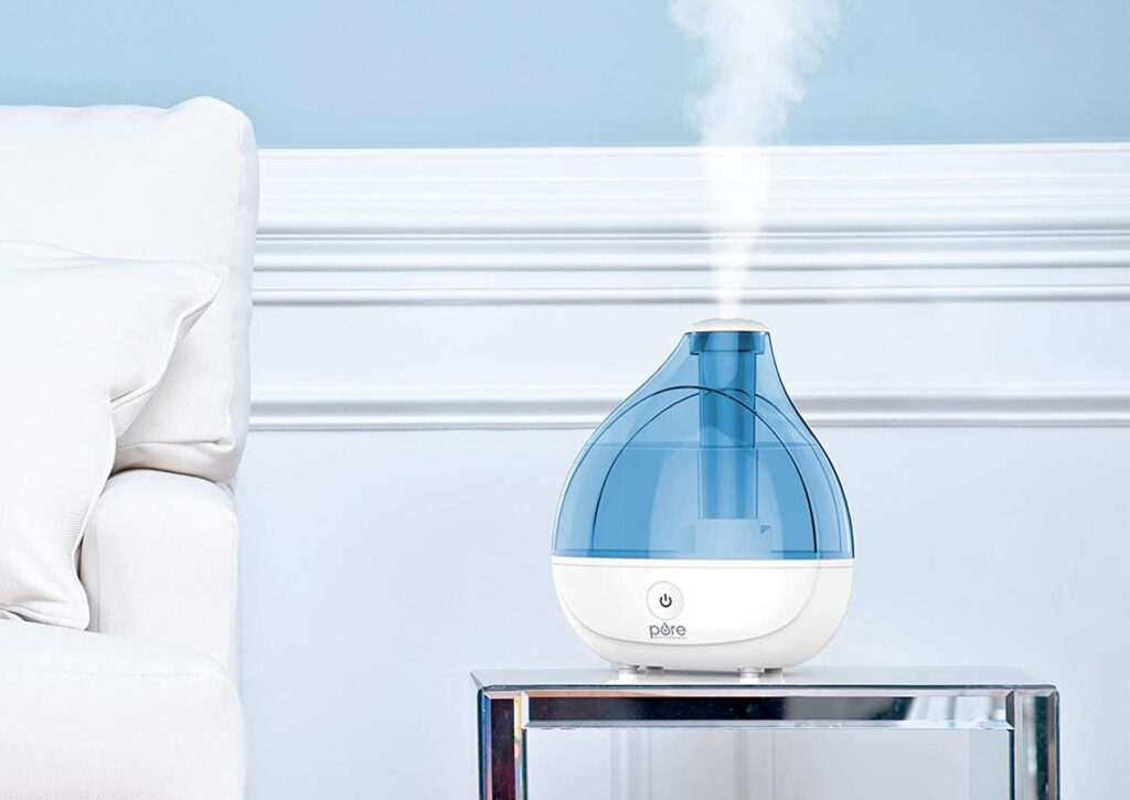 Maintain Your Plant Humidifier
